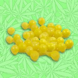 Canna Lemonheads Candy